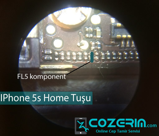 IPhone 5s home tusu cozumu